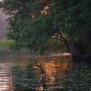Ungura ezers